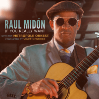 If you Really Want – Raul Midon