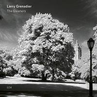 The Gleaners – Larry Grenadier