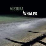Walhes – Mistura