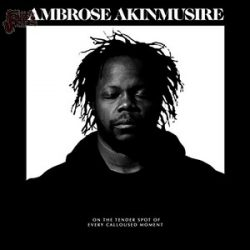 On the tender spot of every calloused moment - Ambroise Akinmusire