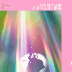 The Sleeper Wakes - Ant Law