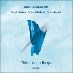 This is not a Harp - Marcella Carboni Trio